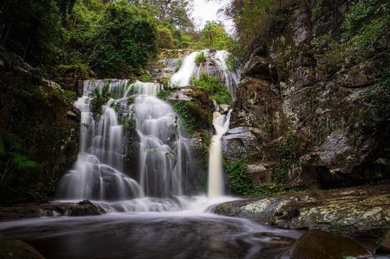 الطبيعية أستراليا 2021 358165684.jpg