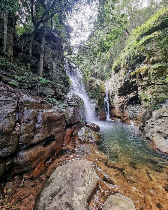 الطبيعية أستراليا 2021 615634748.jpg